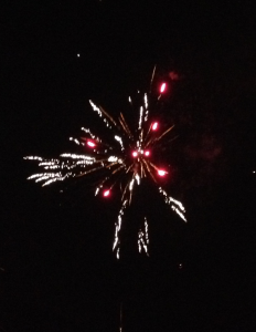 Gott nytt 2015!